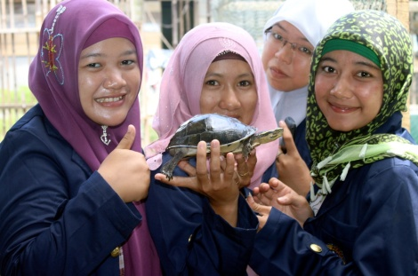 students and Cuora ambinensis