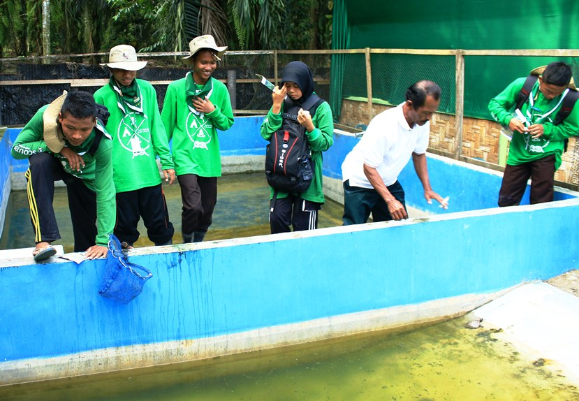 students watching the hatchlings in the ponds