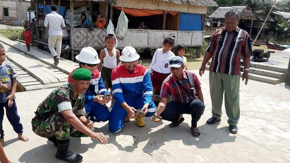The stakeholders releasing babies of Painted terrapin (Batagur borneoensis).