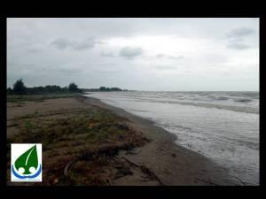 nesting beach 2
