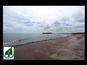nesting beach 6